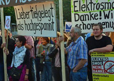 Demo keine Überland-Stromtrasse Bild 7