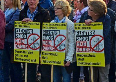 Demo keine Überland-Stromtrasse Bild 8