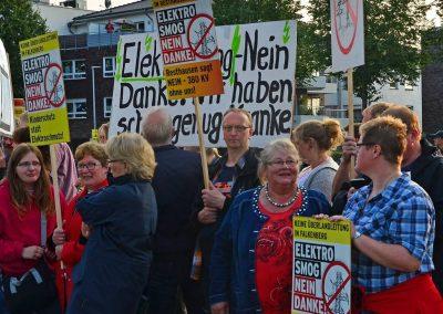 Demo keine Überland-Stromtrasse Bild 14