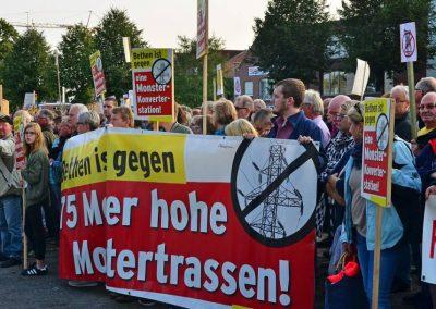 Demo keine Überland-Stromtrasse Bild 15