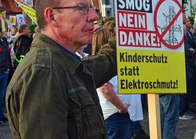 Demo keine Überland-Stromtrasse Bild 16