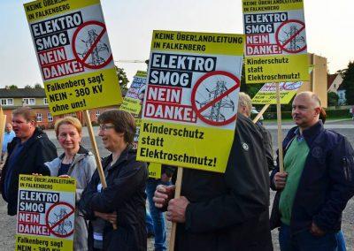 Demo keine Überland-Stromtrasse Bild 17