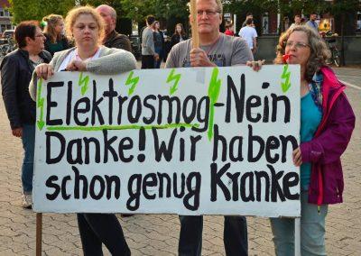 Demo keine Überland-Stromtrasse Bild 19
