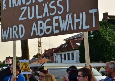 Demo keine Überland-Stromtrasse Bild 1