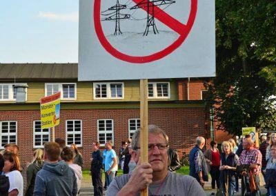Demo keine Überland-Stromtrasse Bild 5